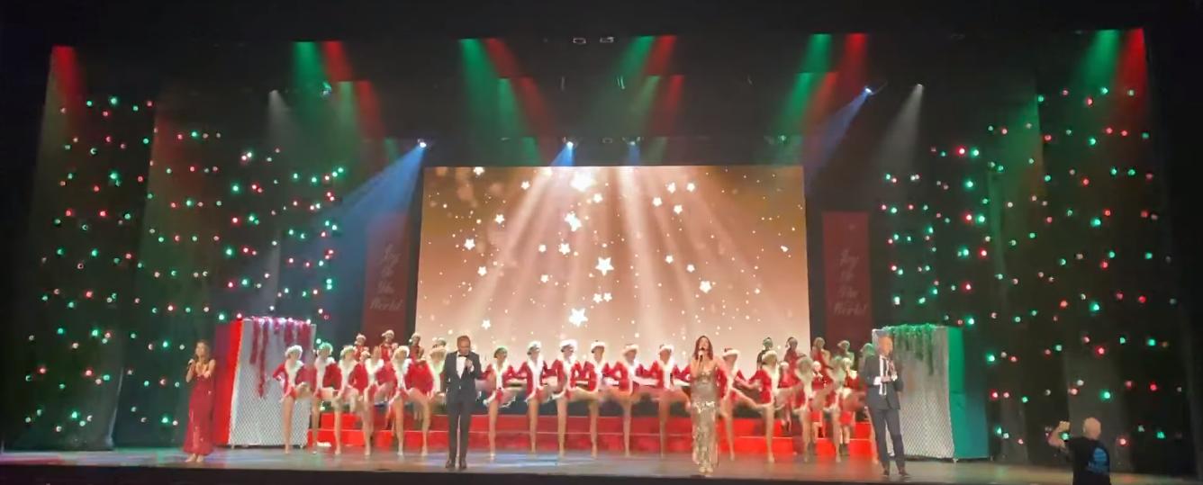 hama-christmas-spectacular-tls-dmx-festoon